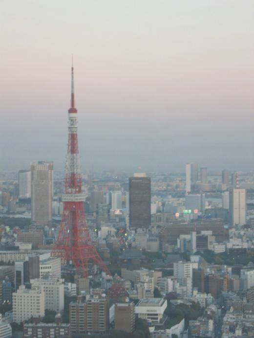 六本木ヒルズ39階から望む東京タワー